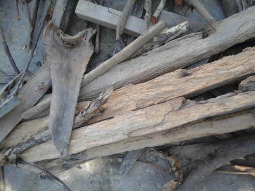 kayu-tempel